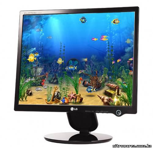 Украсьте свой рабочий стол заставкой в виде аквариума с экзотическими